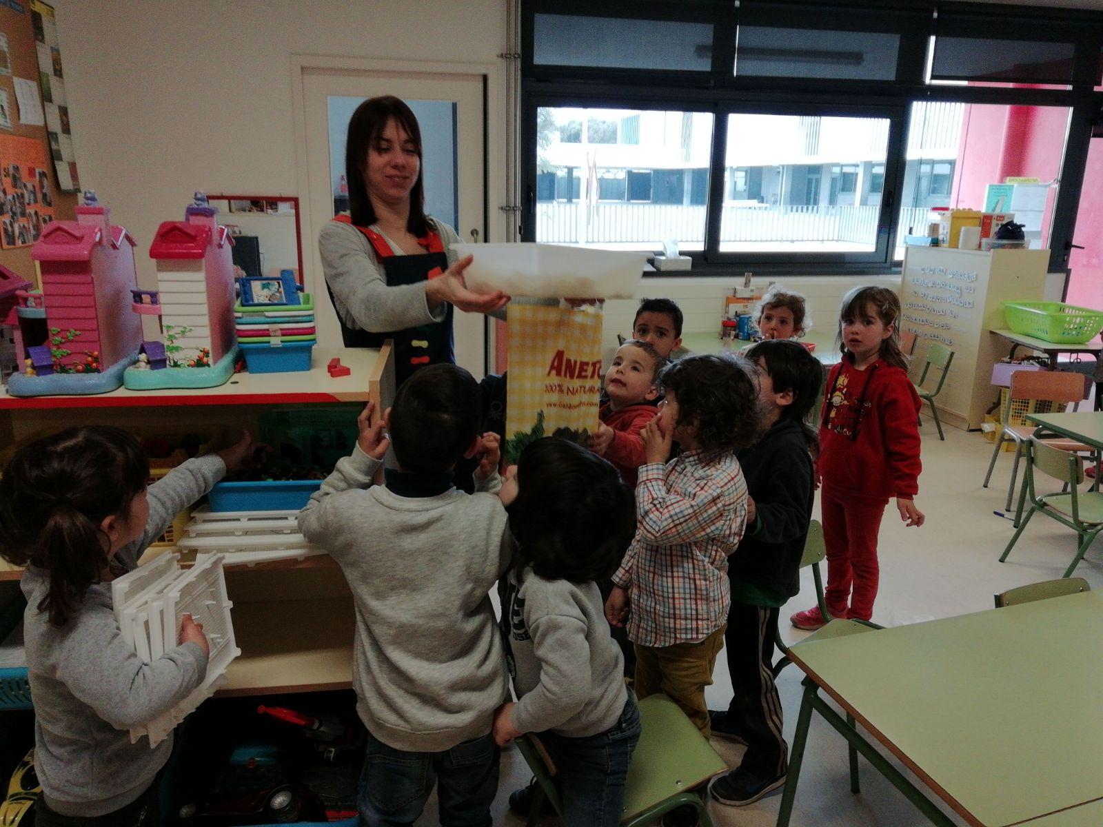 MACOR fruita Escola Nova Maçanet de la Selva